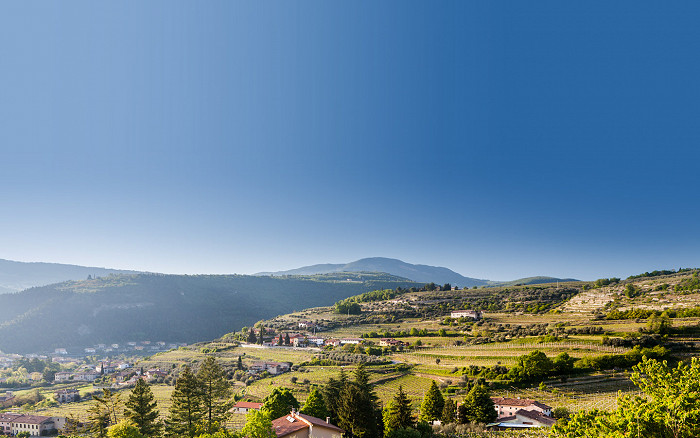 Music and Wine Tour to Valpolicella